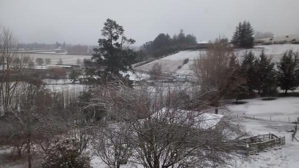 The view from my bedroom...cold and white!
