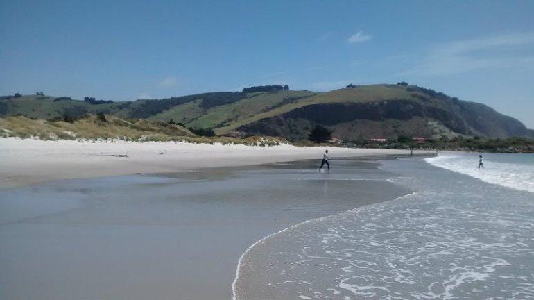 aramoana_beach