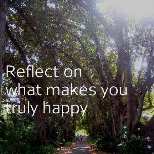 happy_bigtrees