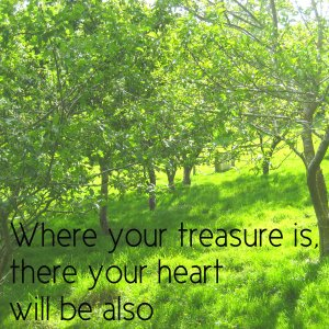 theorchard_treasure