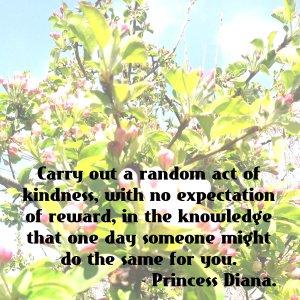 princess_diana_quote_kindness