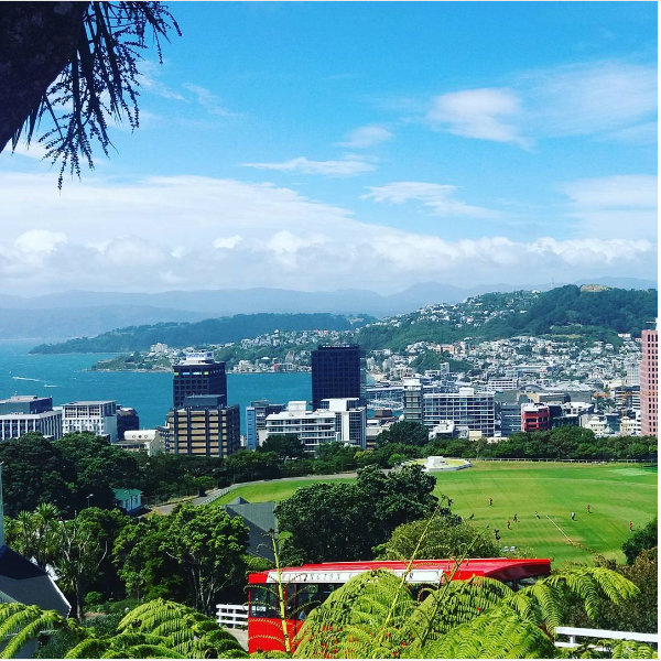 I was up in Wellington last week, renewing our passports. We're off overseas again soon. I can't wait!