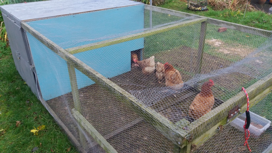 home made chicken tractor
