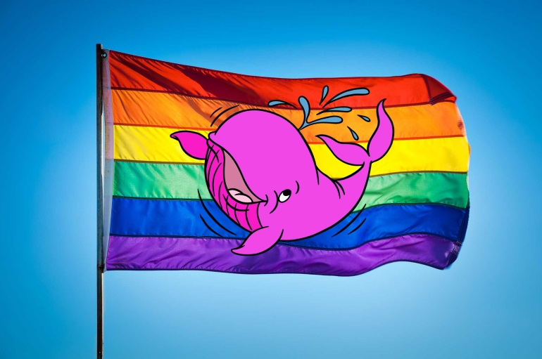 land rights for gay whales